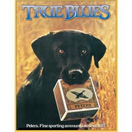 Peters-True Blue Lab